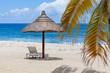 palmes et parasol de paille sur plage de Boucan Canot, île de la Réunion