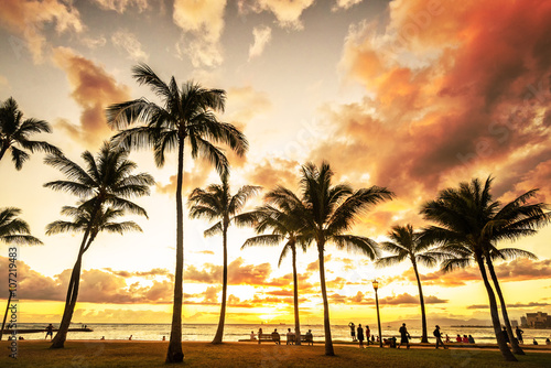Cadres-photo bureau Palmier Picturesque sunset along Waikiki Beach in Honolulu, Hawaii