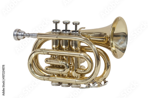 classical wind musical instrument cornet isolated on white background - 107224878