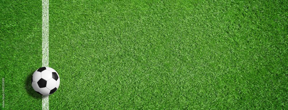 Fototapety, obrazy: Fußball auf grünem Rasen mit Makierung