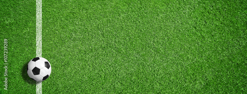 Obraz Fußball auf grünem Rasen mit Makierung - fototapety do salonu