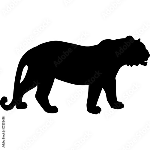 Photo  tiger silhouette