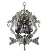 Isolated Detailed Silver Skull...