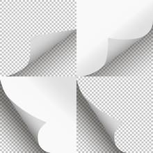 Pages Curl Set Stylish Illustr...