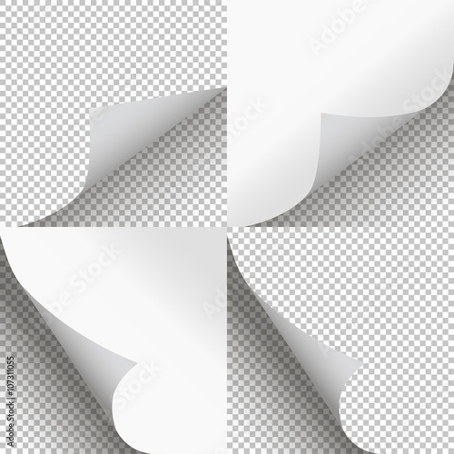 Obraz Pages curl set stylish illustration vector design - fototapety do salonu