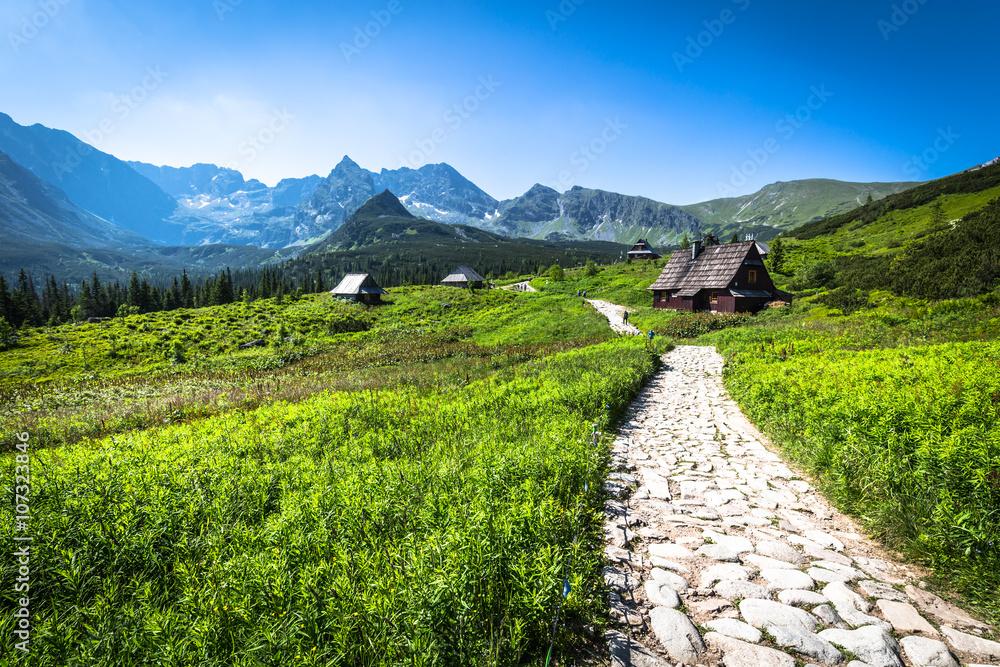Fototapety, obrazy: Hala Gasienicowa(Valey Gasienicowa) in Tatra mountains in Zakopa