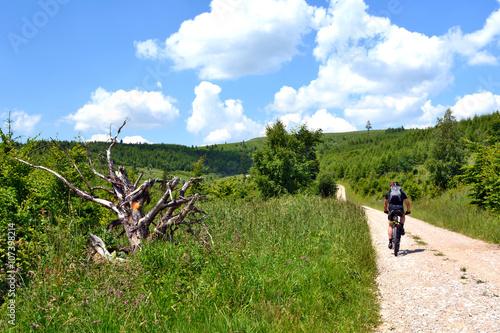 Fotografie, Obraz  Na szlaku rowerowym