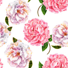 Fototapeta Seamless background pattern with vintage style watercolor roses