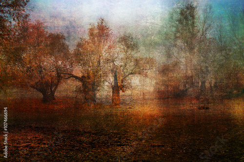 Poster Chocoladebruin Art grunge landscape showing creepy old forest in autumn