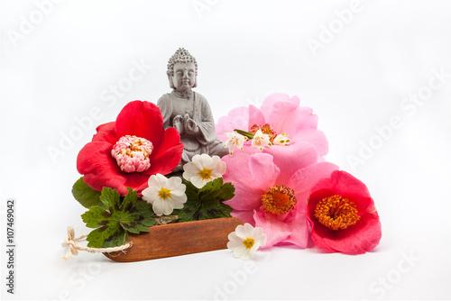 Trunk whit flower Fototapeta