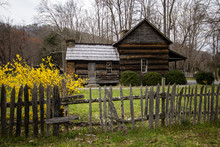 Smoky Mountain Cabin In The Springtime. Historical Cabin The Smoky Mountains With Spring Forsythia In The Foreground.