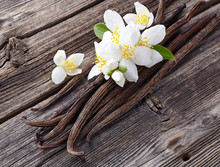 Vanilla With Jasmine Flowers