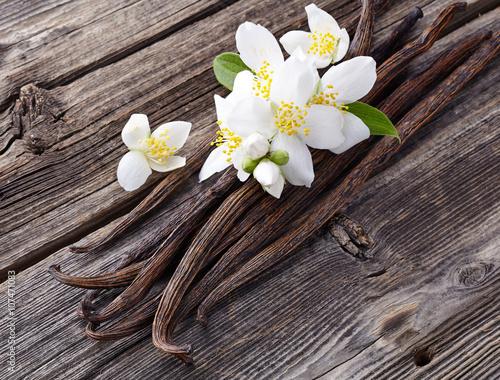 Fotografía  Vanilla with jasmine flowers
