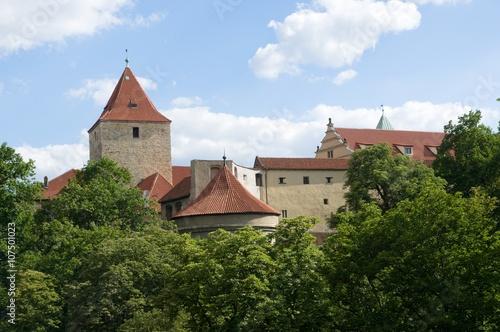 Photo  Prague castle from Royal garden, Prague, Czech republic