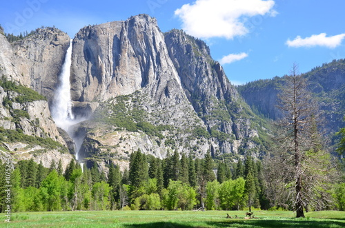 Yosemite Falls in Yosemite Valley, National Park Canvas Print
