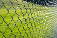 Wire Mesh And Green Background