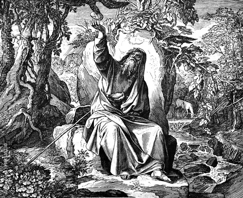 Photo  Elijah Fed by Ravens 1) Sacred-biblical history of the old and New Testament