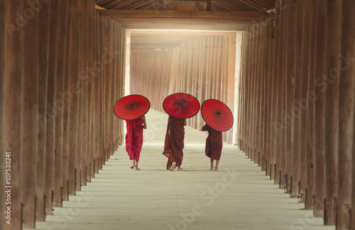The boys of buddhist monks Canvas Print
