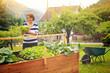 Leinwandbild Motiv Frau erntet Salat vom eigenen Hochbeet/gardening 19