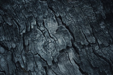 Dark Wooden Bark Tree Texture ...