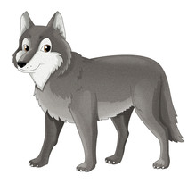 Cartoon Animal - Wolf - Isolated - Illustration For Children