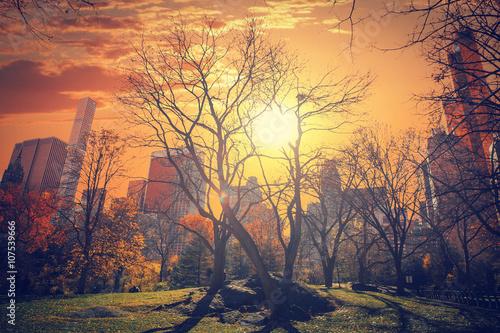 Canvastavla New York City Manhattan Central Park