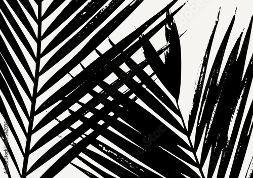 sylwetka-lisc-palmowy