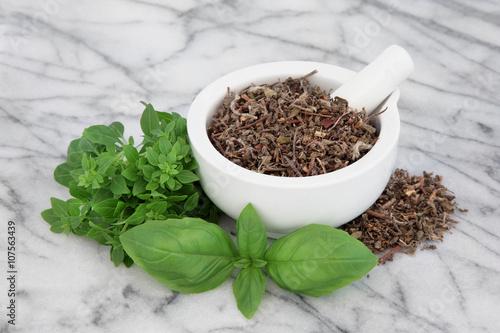 Photo  Basil Herb Varieties