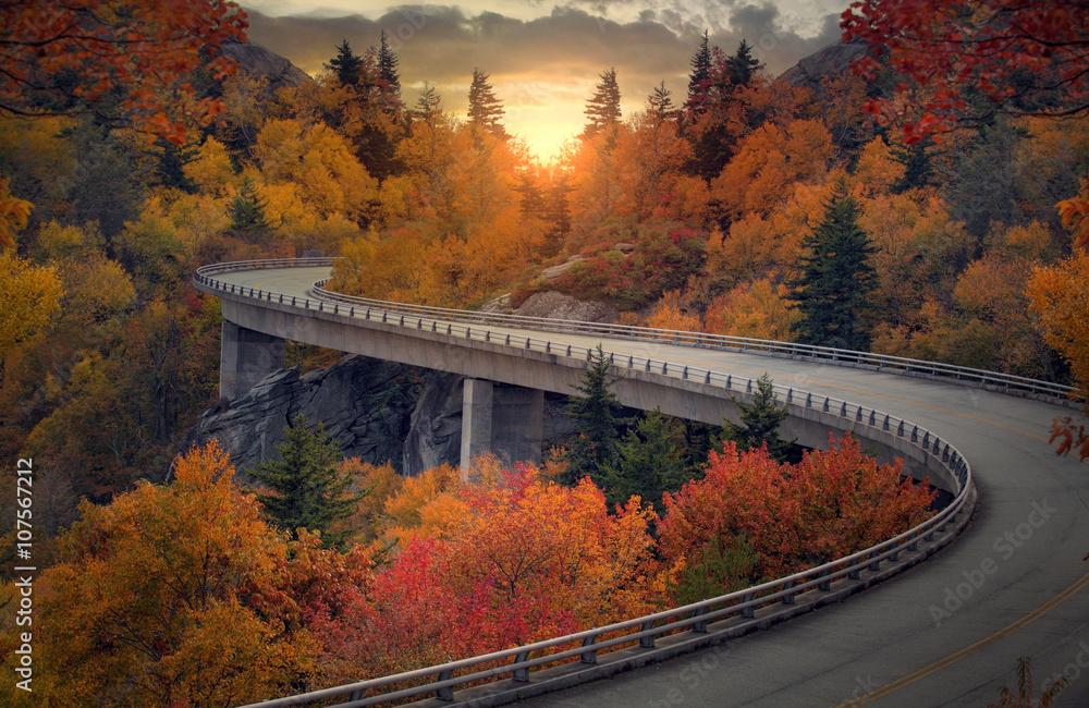 Fototapety, obrazy: Curvy autumn road