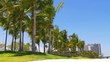 summer sunny day miami downtown palm park traffic panorama 4k usa