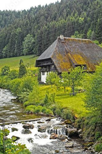 Poster de jardin Kaki altes Schwarzwaelder Bauernhaus am Fluss