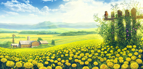 Obraz Summer country landscape with a field of dandelions and farm on the background plan.