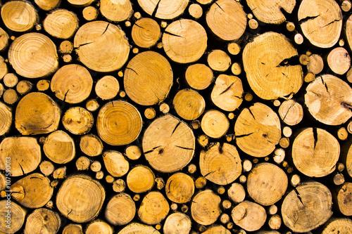 Fotografia  Rustic and cozy log wall