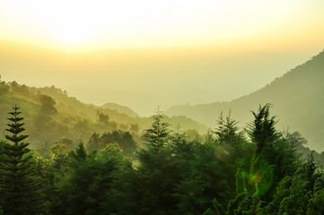 Obraz na SzkleLandscape of national park in Chiangmai, Thailand