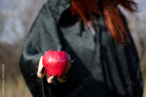 Obraz na plátně  Witch from fairy tale about Snow White offers to eat an poisoned apple