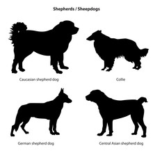 Dog Silhouette Icon Set. Shepe...