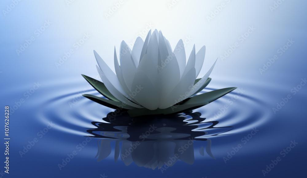 Fototapety, obrazy: Kwiat lotosu w niebieskiej wodzie