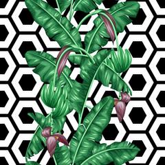 fototapeta wzór z liści bananowca