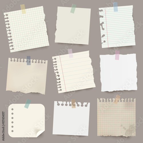 Fototapeta  Collection of various vector note papers.