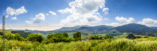 plakat meadow with flowers in mountains