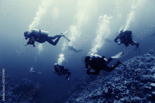 Obraz na płótnie divers underwater the sea