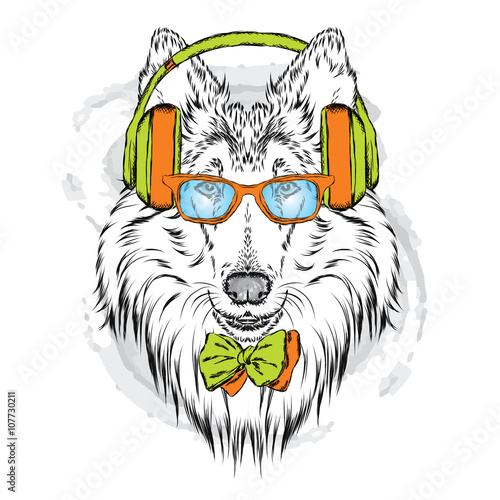 Fotobehang Hand getrokken schets van dieren Pedigree dogs painted by hand. Collie wearing headphones and sunglasses. Vector illustration.