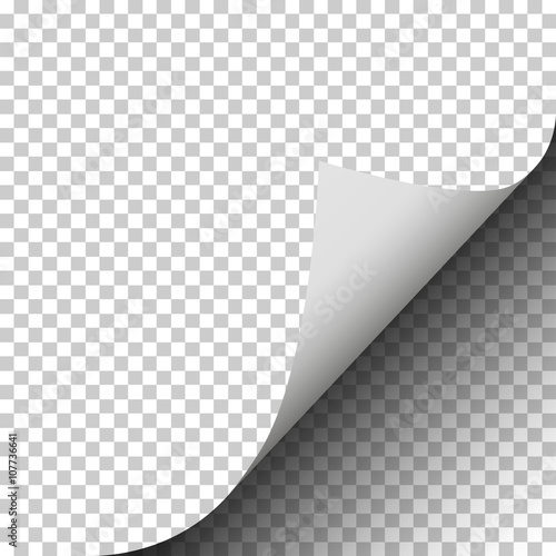 Obraz Page curl of a blank sheet of paper on transparent background - fototapety do salonu