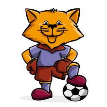 The Fox Soccer Player