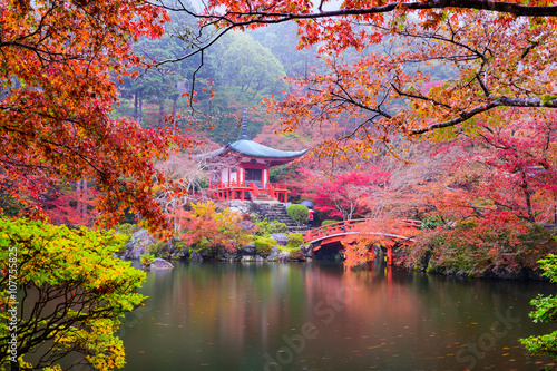 Wall Murals Temple Kyoto Temple in Autumn