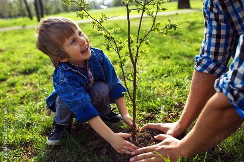 Láminas  little boy helping his father to plant the tree while working together in the garden