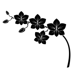 Naklejkaorchid branch silhouette vector for design