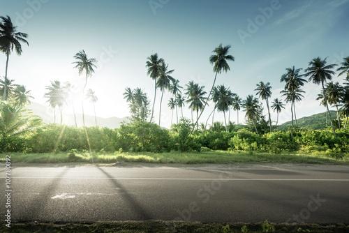 Fotografiet  empty road in jungle of Seychelles islands