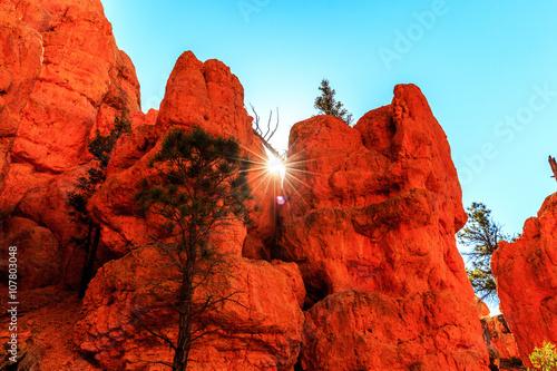 Keuken foto achterwand Rood traf. Hoodoos in Red Canyon in Utah, USA.