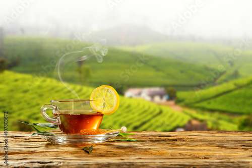 Foto op Aluminium Thee Cup of hot tea with plantation on background